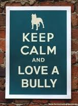 Bulling photo 2